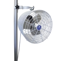 Rental store for TENT POLE FAN in Fort Worth TX