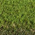 Rental store for 12  X 17  ARTIFICIAL GRASS GREEN in Fort Worth TX